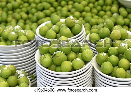Pictures of Greengage Plum Galore k19594508.