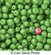 Greengage Illustrations and Clipart. 17 Greengage royalty free.