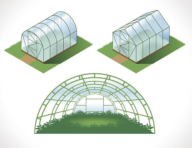 Best Greenhouse Illustrations, Royalty.
