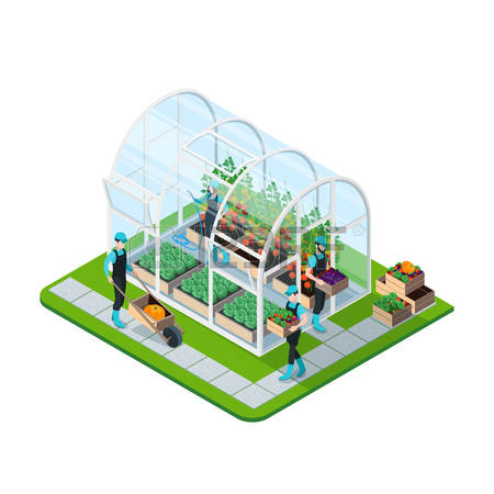 4,970 Greenhouse Stock Vector Illustration And Royalty Free.