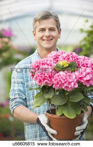 Stock Image of Portrait of happy man holding flower pot in.