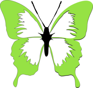 Butterfly clipart c.