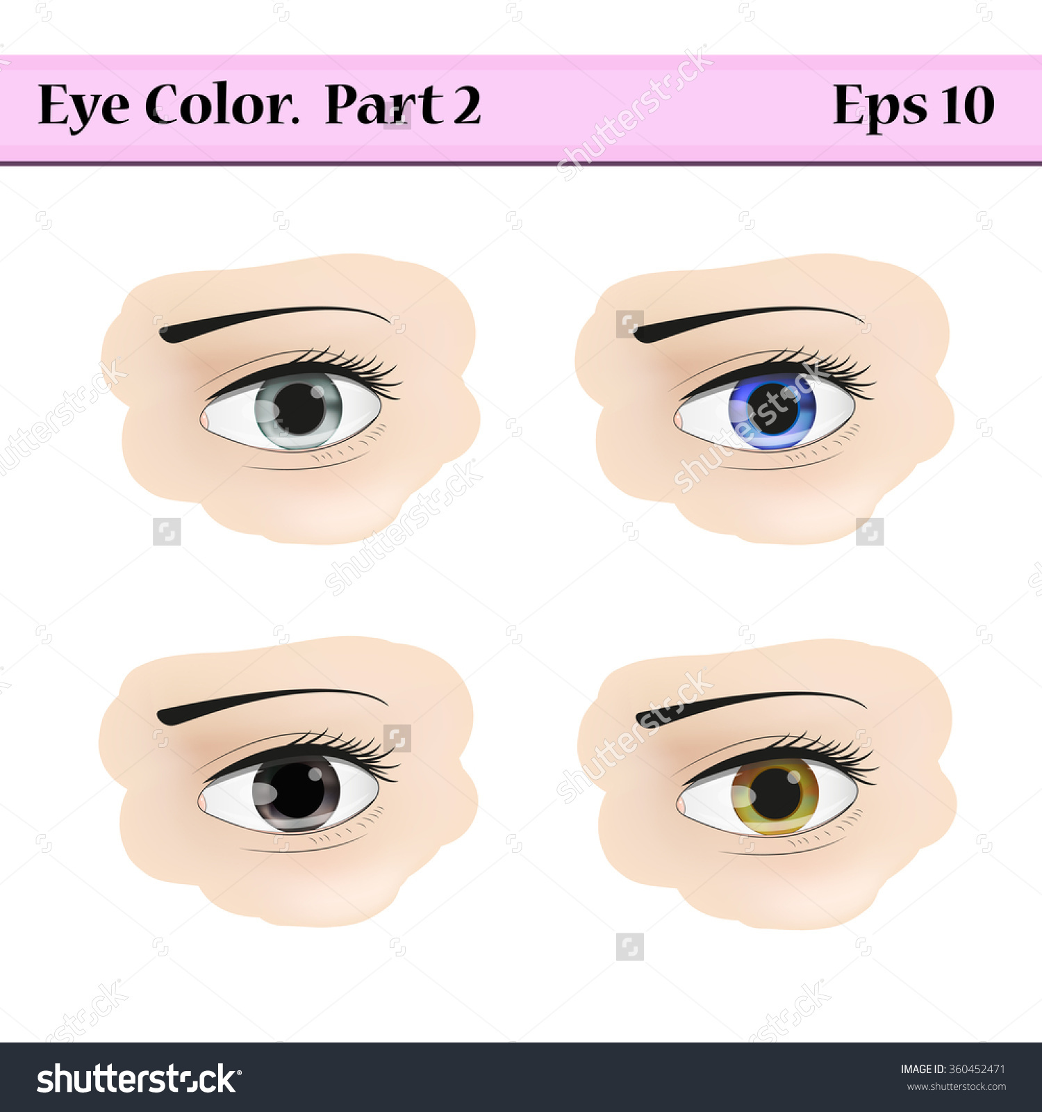Types Eye Color Gray Blue Black Stock Vector 360452471.