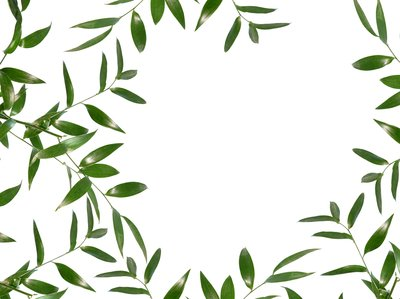 Green Leaves Borders Clipart.