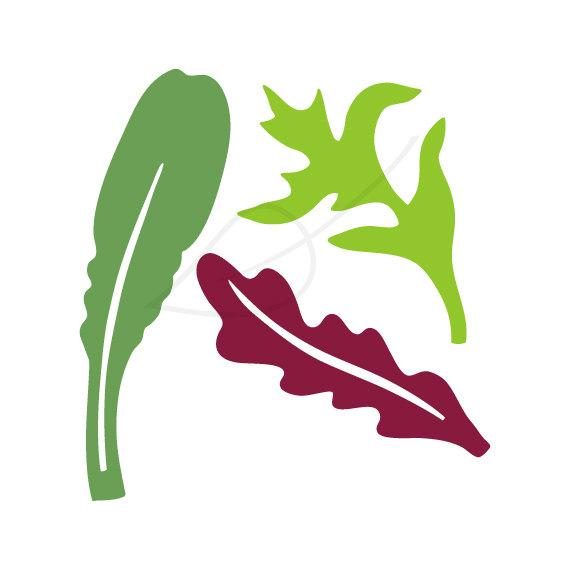 Items similar to Salad Clip Art, Mixed greens mesclun digital.