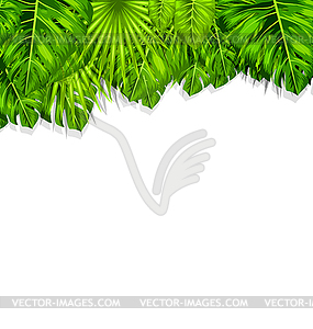 Natural Frame with Green Tropical Leaves.