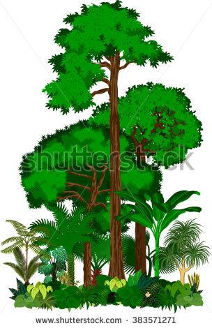 Rainforest Stock Vectors, Images & Vector Art.