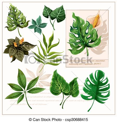 Vector Clip Art of Green tropical leaves pictograms set.