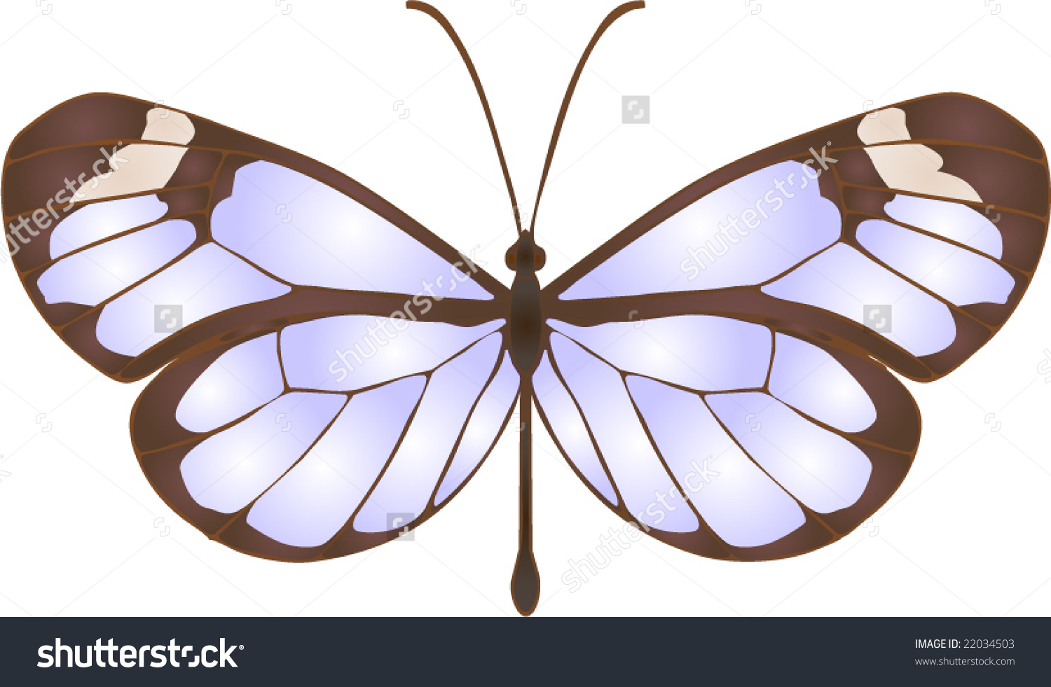 Collection Butterflies Greta Oto Stock Vector 22034503.