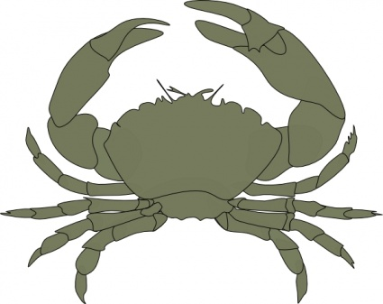 Crab Vector.