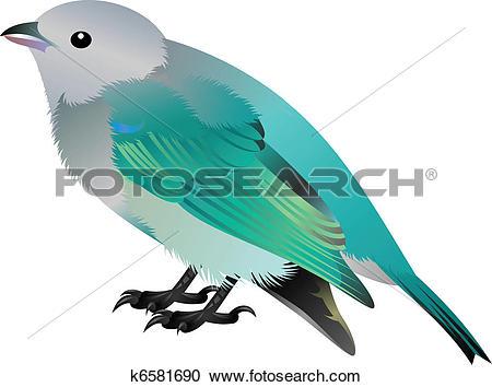 Clipart of grey headed blue bird k6581690.