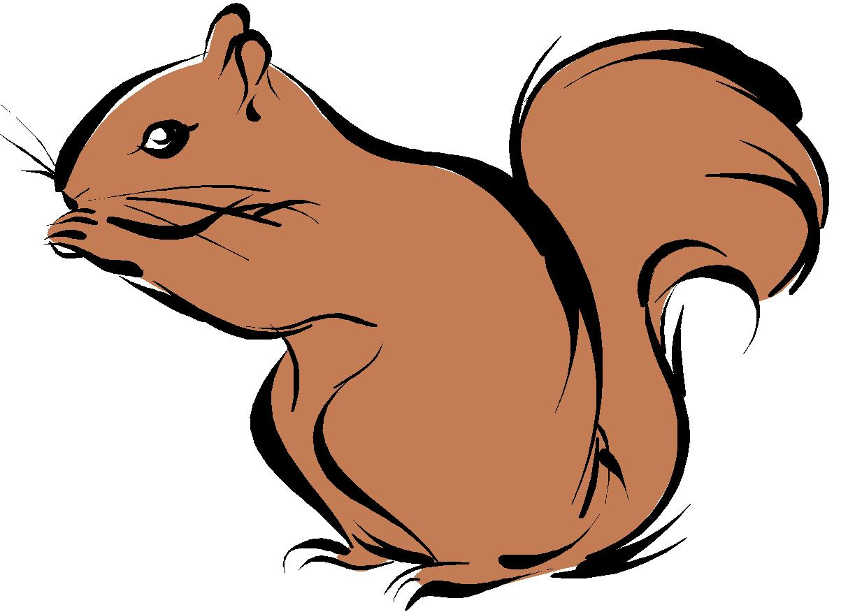 Best Squirrel Clipart #9593.
