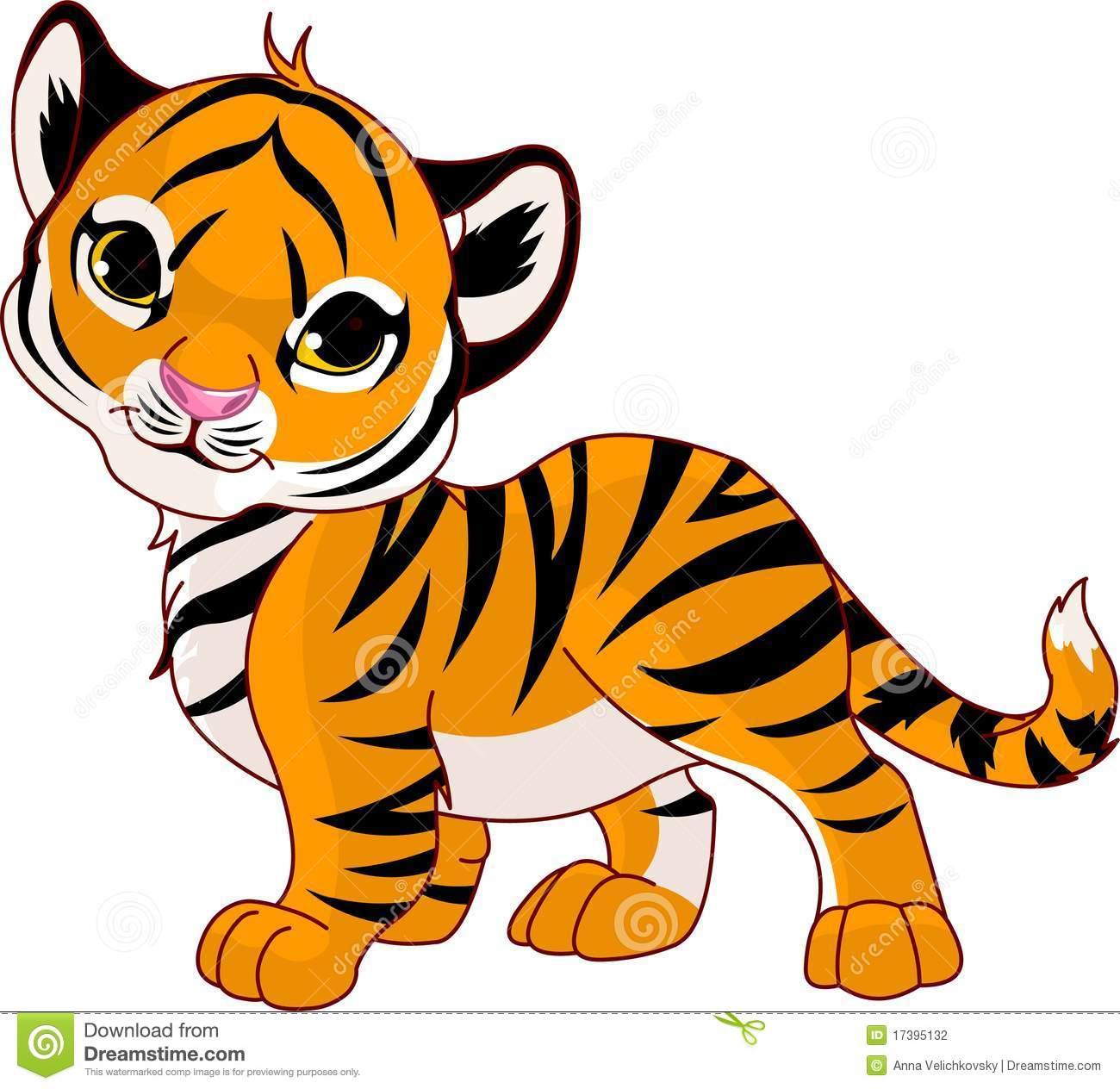 Walking Baby Tiger Stock Photography.