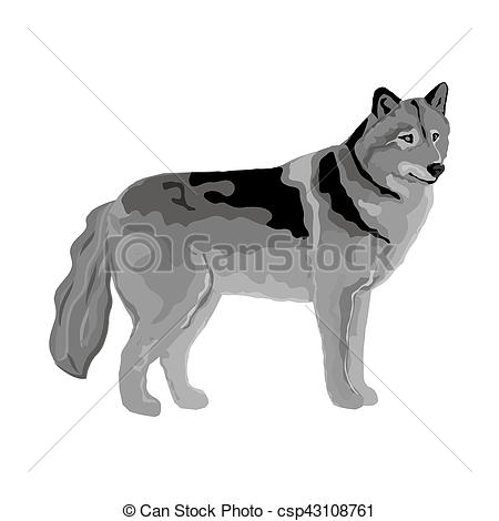 Grey wolf Illustrations and Clipart. 766 Grey wolf royalty free.