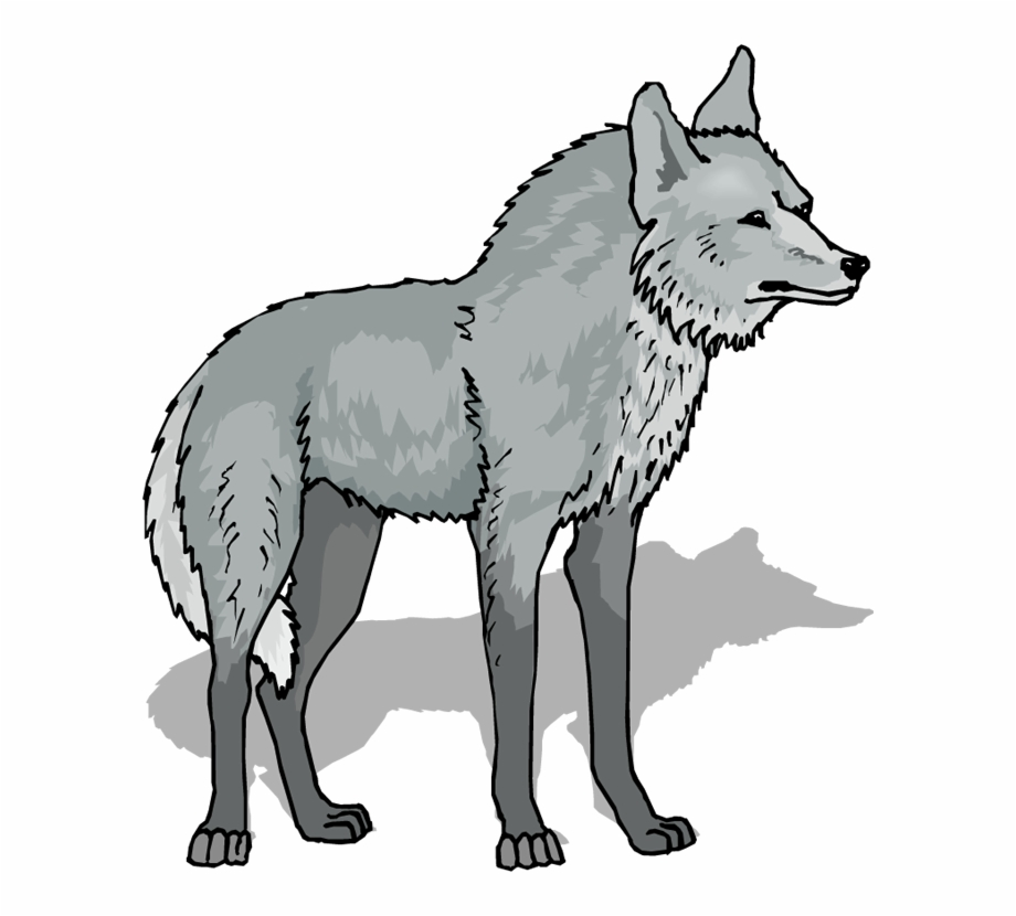 Wolf Png Image Clipart.