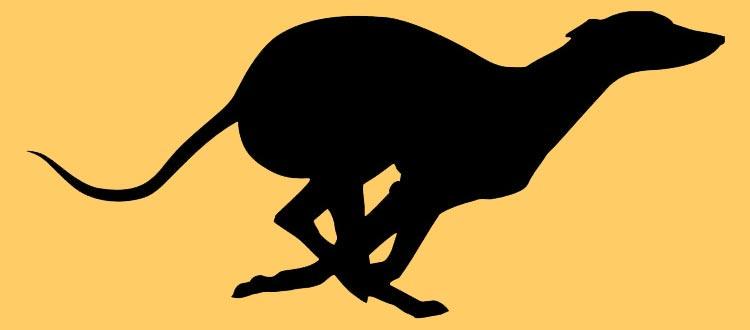 Greyhound Silhouette Clip Art.