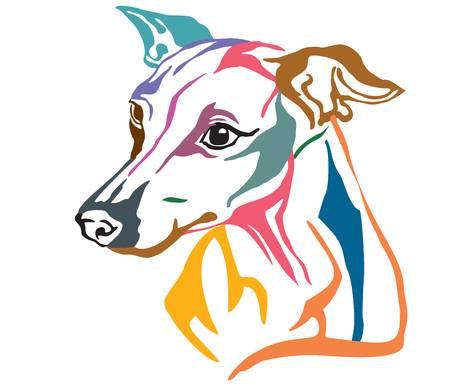 3,786 Greyhound Stock Vector Illustration And Royalty Free Greyhound.
