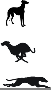 Free Clipart Greyhound Racing.