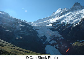 Picture of Flowers rock and peaks in snow nearby Grindelwald in.