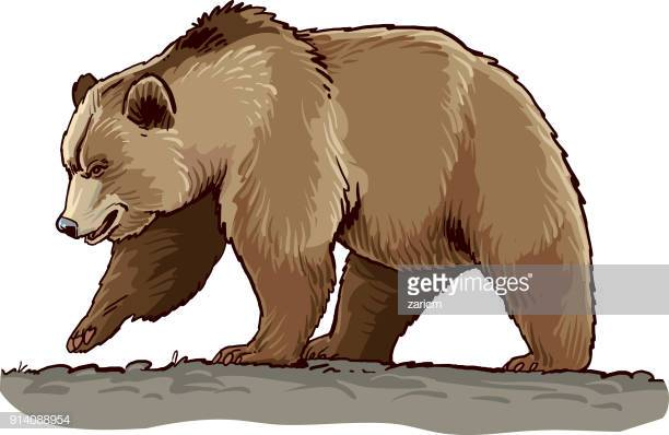60 Top Grizzly Bear Stock Illustrations, Clip art, Cartoons, & Icons.