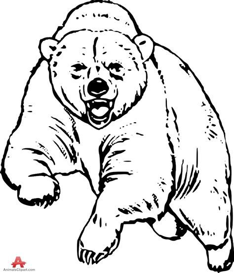 Grizzly bear free drawing patterns to trace in 2019.