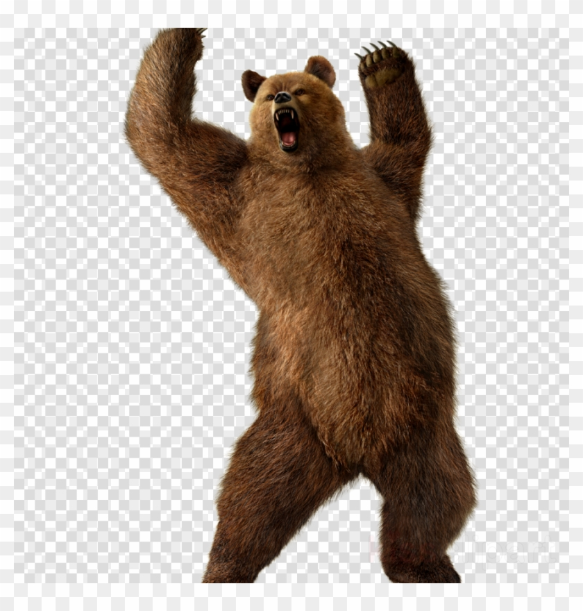 Download Grizzly Bear Transparent Png Clipart Grizzly.