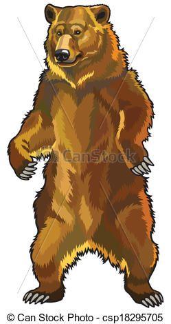 Vector Clipart of grizzly bear, ursus arctos horribilis, front.