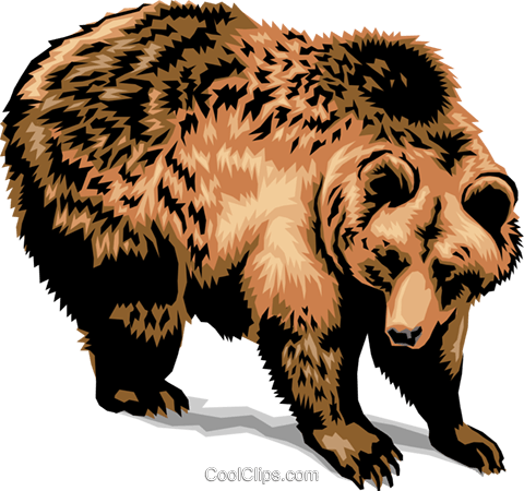 Grizzly Bear Royalty Free Vector Clip Art illustration.