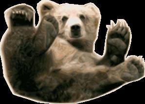Grizzly Bear Clip art.