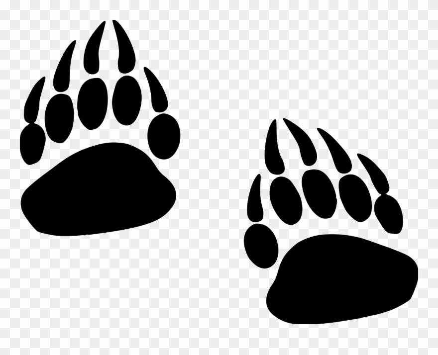 Grizzly Paw Prints File Size.