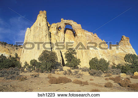 Stock Photo of Afternoon light on Grosvenor Arch, Grand Staircase.