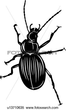 Clipart of , bugs, ground beetle, insect, u13710635.