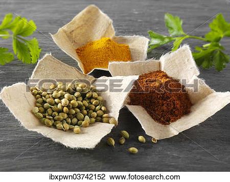 """Stock Photo of """"Coriander seeds, ground chili powder and ground."""