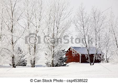 Stock Photo of Hoar frost refers to the white ice crystals.