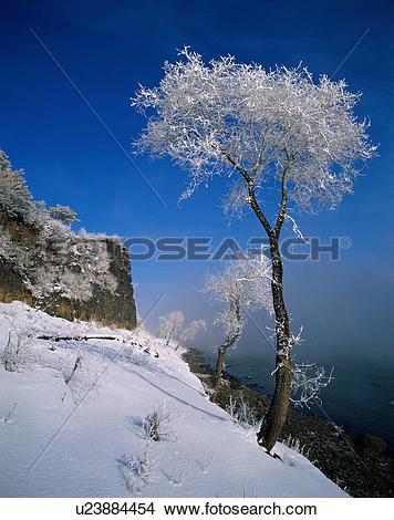 Stock Photo of Snow.
