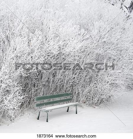 Stock Photo of winnipeg, manitoba, canada; frost and snow covering.