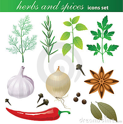 Nutmeg Stock Illustrations.