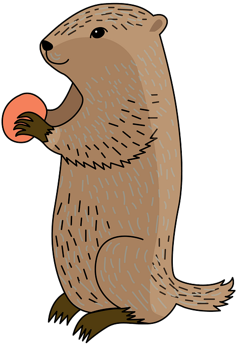Groundhog clipart. Free download..