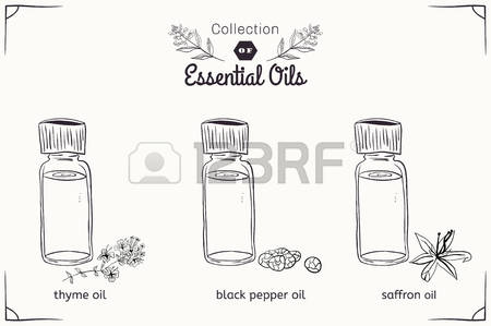 5,598 Black Pepper Stock Illustrations, Cliparts And Royalty Free.