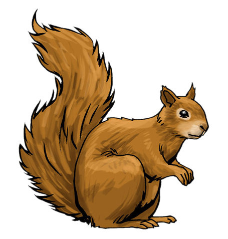 Free to Use & Public Domain Squirrel Clip Art.