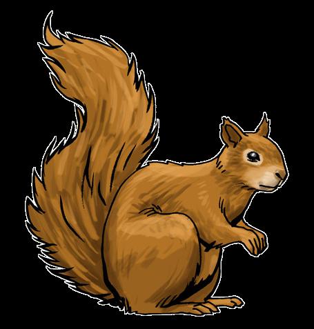Ground squirrel clipart - Clipground