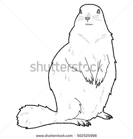 Arctic Ground Squirrel Clip Art.