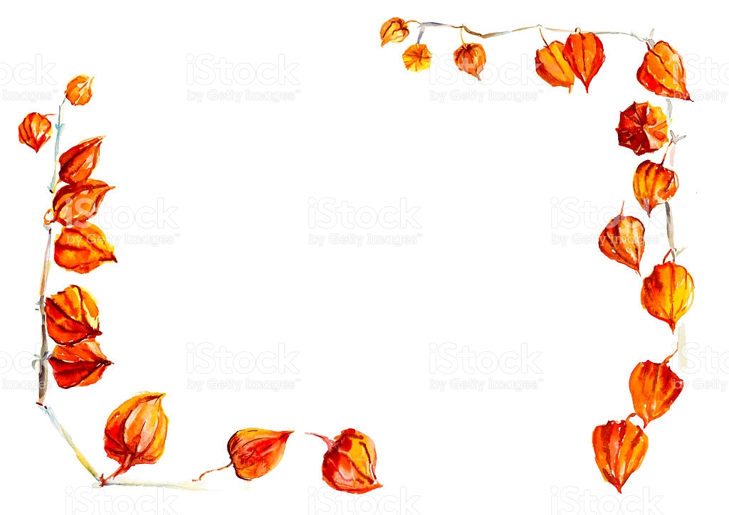 Frame From Ground Cherry Autumn Backdrop stock vector art.