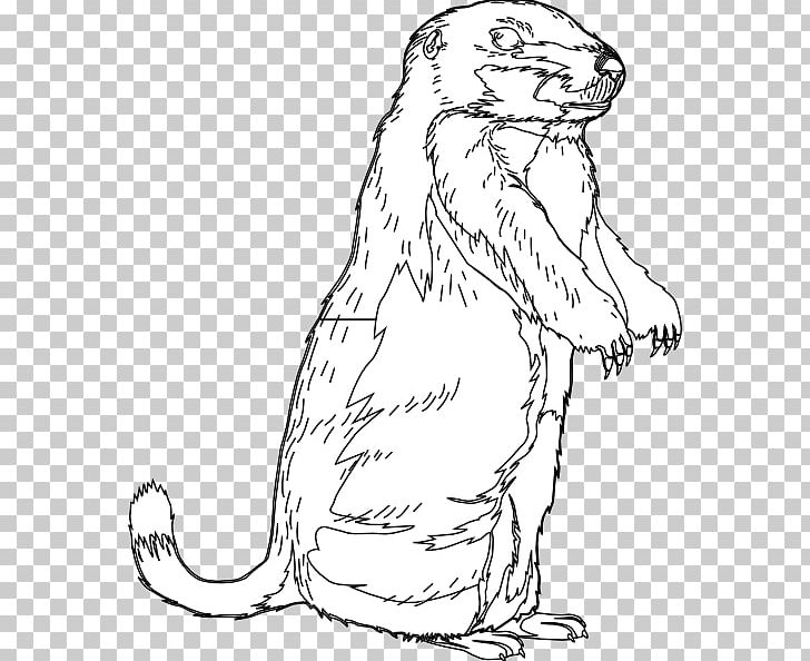 The Groundhog Groundhog Day Open PNG, Clipart, Artwork, Beaver.