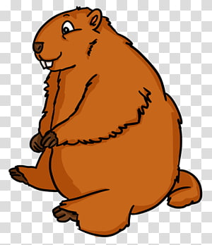 Groundhog transparent background PNG cliparts free download.