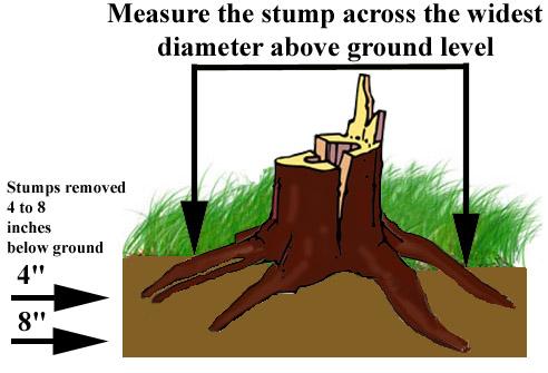 Ground Level Clip Art.
