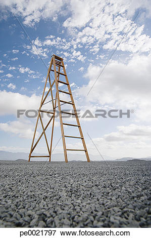 Picture of Ladder outdoors ground level view with blue sky and.