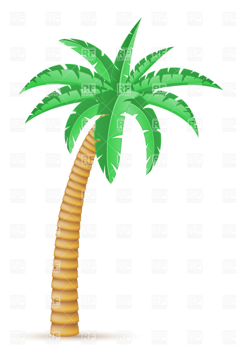 Tropical tree clipart.