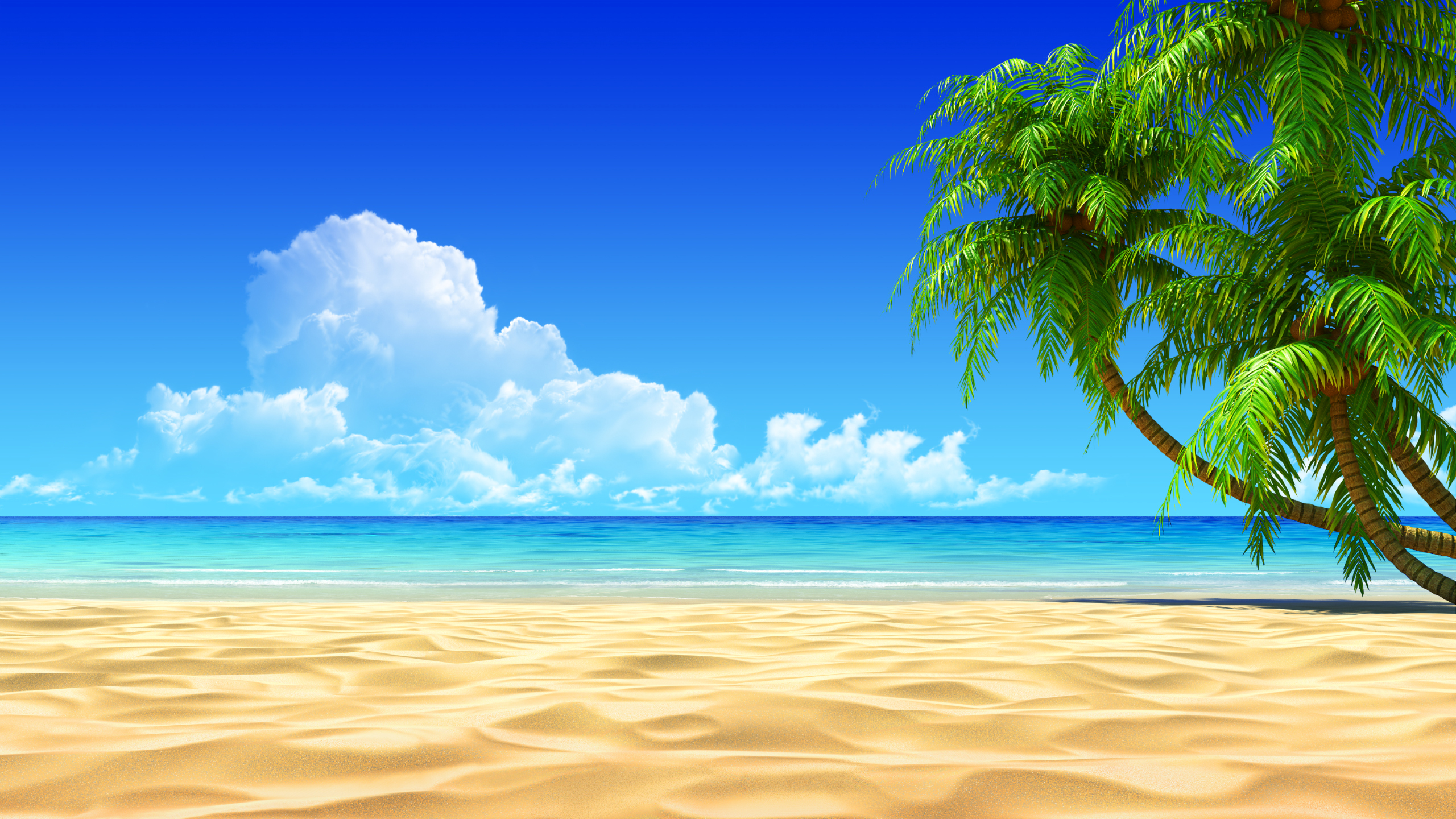 Tropical beach clipart wallpaper.