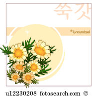 Groundsel Stock Illustrations. 3 groundsel clip art images and.